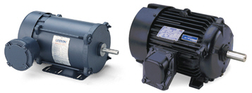LEESON Explosion-Proof Three Phase Motors