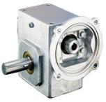 LEESON Grove Gear IRONMAN ALL-STAINLESS Reducers
