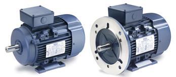 LEESON IEC (Metric) Motors