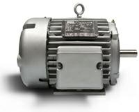 LEESON Permanent Magnet AC Motors