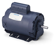 LEESON Resilient Base Motors