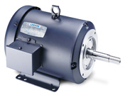 LEESON Three Phase JM Pump Motors