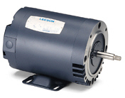 LEESON Three Phase Jet Pump Motors