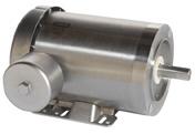 LEESON Three Phase Stainless Steel Motors